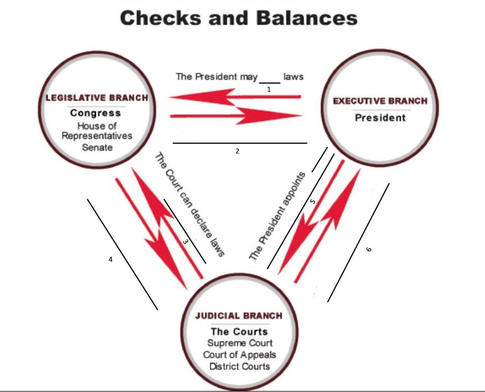 checks and balances flow chart quiz